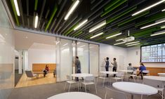 NYU Steinhardt School of Culture, Education and Human Development / LTL Architects