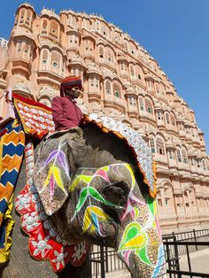 India, Rajasthan, Jaipur, Ceremonial Decorated Elephant Outside the Hawa Mahal, Palace of the Winds Lámina fotográfica by Gavin Hellier at AllPosters.com