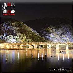Kyoto ArashiyamaHanatouro2014 World Festival, Kyoto, Northern Lights, Japan, Celestial, Nature, Travel, Outdoor, Outdoors