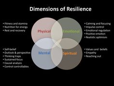 Dimensions of Resilience Venn Diagram