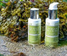 Seaweed Body Scrub and Facial Polish great for any skin type West Cork, Birthday Wishlist, Body Scrub, Seaweed, Natural Skin Care, Facial, Bloom, Polish, Ocean