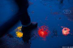 雨上がりのランタンフェスティバル