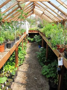 Greenhouse Gardening And Greenhouse Farming