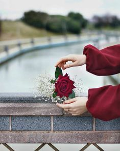Image may contain: one or more people, flower and outdoor Flower Phone Wallpaper, Flower Wallpaper, Iphone Wallpaper, Beautiful Hijab, Beautiful Roses, Hand Fotografie, Hands Holding Flowers, Hand Holding, Flowers Instagram