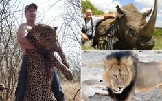 "Dr Walter Palmer is alleged to have boasted of slaying ""the world's biggest   lion"" during a visit to a restaurant near his dental practice"