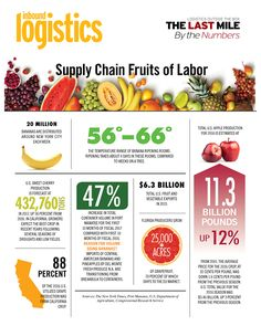 Supply Chain Fruits of Labor (2017)