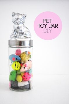 Organize all your cat's toy in one place with this DIY Pet Toy Jar.