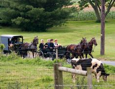 Open buggy of Amish youths followed by closed family buggy