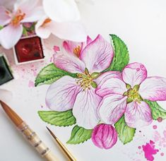 """Blossom by blossom the spring begins"". Can't wait for you😉🌸🎨 #spring #springmood #watercolor #watercolour #painting #illustration #cz #pink #flowers #art #instaart #akvarel #barvy #ilustrace #sennelier #archespaper #vytvarkyvsoukenicke #watercolorlove #artwork"