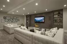Basement Lower Level Family Room