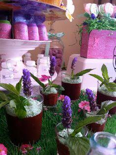Mint choc flower pots/plants