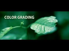 How to color grade DSLR footage! (Editing Tutorial) Free Colour Grading presets - http://fenchel-janisch.com/FREE