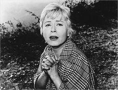 Fellini Films, Film Icon, Sweet Charity, Hello Beautiful, Golden Age, Movie Tv, Cinema, Actresses, Couple Photos