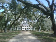 Rosedown Plantation. By far my favorite plantation.Jon and I went there the day he asked me to marry him.