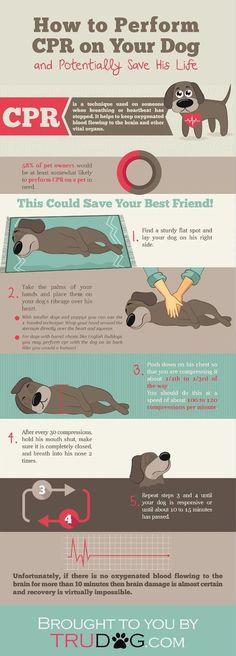 Stop Dog Barking Ultrasonic #dogtrainingadvice