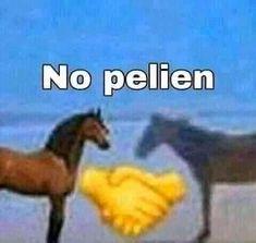 Kpop Memes, Dankest Memes, Jokes, Funny Images, Funny Pictures, Spanish Memes, Meme Faces, Stupid Memes, Mood Pics