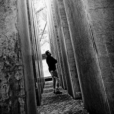 the Garden of Exile by Luca Pradella, via Flickr