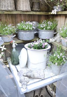 Could build shelves like these on back fence & have fun potted plants in it