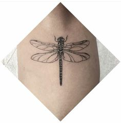 Dragonfly Tattoo                                                                                                                                                                                 More