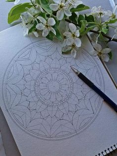 New drawing by The Effective Pictures We Offer You About Mandala Drawing simple A Mandala Sketch, Mandala Doodle, Mandala Art Lesson, Mandala Artwork, Mandala Drawing, Mandala Painting, Watercolor Mandala, Doodle Art Drawing, Zentangle Drawings