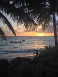 Private beach sunset Barbados, Caribbean, Sunset, Beach, Christmas, Sunsets, Xmas, The Beach, Beaches