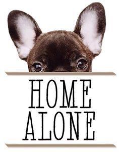 homealone | Home Alone