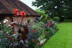 Summer bulbs in bloom in a home garden