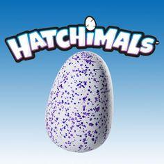 """Vedes: Spin Master: Hatchimals Aus dem Ei wird etwas ganz Besonderes schlüpfen. Es macht Geräusche und reagiert auf seine Umgebung. Wer wissen will, was sich in dem Ei befindet, muss sich gut darum kümmern, es streicheln und versorgen. Denn nur dann wird das Wesen darin auch schlüpfen - ohne deine Hilfe geht es nicht.     Die magischen Wesen reagieren auf ihre Umgebung und entwickeln sich durch drei Entwicklungsphasen hinweg vom Küken bis zum """"ausgewachsenen"""" Hatchimal."""