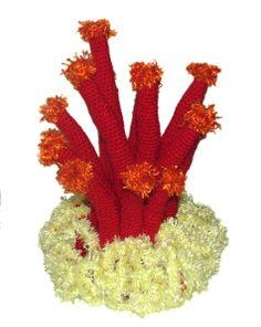 hyperbolic coral reef