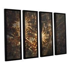 "ArtWall Falling Towards Stars by Mark Ross 4 Piece Framed Graphic Art Set Size: 24"" H x 32"" W x 2"" D"