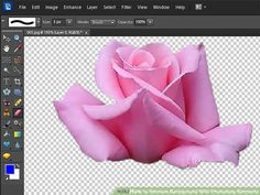 Remove Background With Photoshop Elements