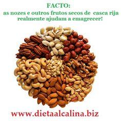 frutos secos de casca rija para emagrecer