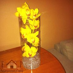 How to arrange flowers in a vase for more on; floatproject.org