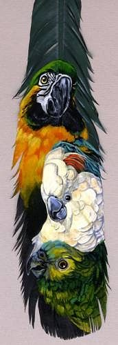 ☆ Featherpainting for Mom :¦: By Heather (Schumacher) Meuser ☆ Turkey Feathers, Bird Feathers, Painted Feathers, Paper Feathers, Colorful Feathers, Feather Painting, Feather Art, Tattoos Plume, Gourd Art