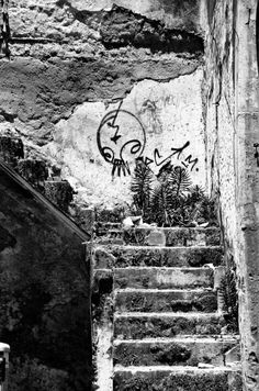 Stairway to a Brighter future in Havana Cuba by photographer & painter Max Marian Kalin Havana Cuba, Stunning Photography, Bright Future, Stairways, All Art, Online Art, Photographs, Black And White, Artist