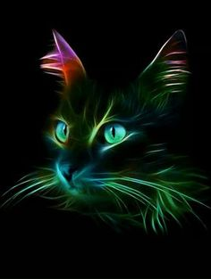 For all cat lovers - - bunt colore - Cat Drawing Neon Cat, Image Chat, Cat Wallpaper, Cat Drawing, Cat Tattoo, Fractal Art, Beautiful Cats, Cool Cats, Cat Art