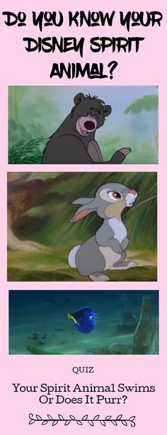 Do you know your Disney Spirit Animal? You might think you know which animal qualifies as your spirit animal, but. Spirit Animal Quiz, Your Spirit Animal, Funny Animal Memes, Funny Animals, Funny Memes, Funny Quotes, Funny Disney Pictures, Funny Animal Pictures, Quiz Disney