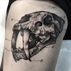 Engraving style black ink tattoo of ancient cat skull