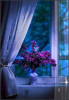 Imagini ,miscatoare,Gifuri,cu sclipici,stralucesc,blog,informatii,urari,mesaje,felicitari zi nastere: Ramură de liliac,trandafir,fluturi,sclipici imagin...