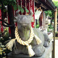 Happy stone cow, Hirakawa Tenmangu Shrine, Chiyoda ward, Tokyo.