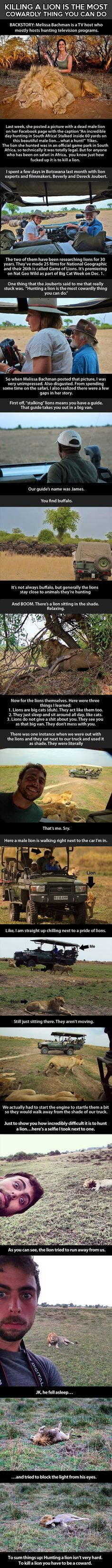 Hunting lions is a cowardly thing to do. It's just Awesome how close they can get to you! And not be mauled to death!