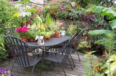More inspiration for those gardening on top of the world (or their home).