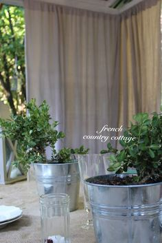 scotchgard outdoor water shield for canvas drop cloth curtains fun in our garden and yard pinterest canvas drop cloths scotchgard and drop cloth