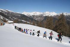 Ciaspolate nelle Alpi Liguri. Organizziamo Escursioni sulla neve, di diverse difficolta', alla scoperta di paesaggi suggestivi, coperti dal manto bianco della neve. Periodo: Gennaio-Aprile Possibilità di noleggio ciaspole e prenotazione lunch box. Per info: 338.30.45.512  iat@mendatica.com #mendatica #lamialiguria #alpiliguri #parcoalpiliguri #snow #mountain #escursioni #neve #ciaspole #snowshoes #lovemountains #outdoors