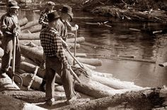 Lumberjacks rolling logs into the river near Littlefork, Minnesota, 1937.. Once the logs are in the river, they are floated downstream to the sawmill.