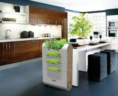 James Wood - James Wood has designed a sleek and contemporary compost bin designed for urban green thumbs. Vedge is a multi-level compost bin featuring slots fo. Home Design, Interior Design, Cabinet Design, Modern Family, Kitchen Decor, Kitchen Ideas, Kitchen Plants, Wooden Kitchen, Outdoor Furniture Sets
