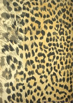 Out of Africa   Leopard Print Paper on Craftsuprint designed by Elizas Emporium - A leopard skin background paper  - Now available for download!