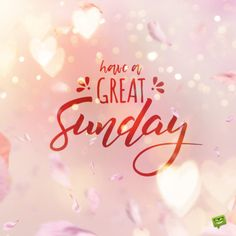 Sunday blessing for messages. Blessed Sunday Morning, Sunday Morning Quotes, Sunday Wishes, Sunday Greetings, Have A Blessed Sunday, Happy Sunday Quotes, Good Morning Prayer, Morning Blessings, Morning Prayers