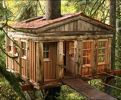 Amazing Do It Yourself treehouse. This will be great for boys and girls.