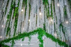 A Romantic Green and White Beverly Wilshire Wedding - International Event Company Beverly Wilshire, Wilshire Hotel, Floral Chandelier, Event Company, Chuppah, Green Accents, Photography Gallery, Flower Boxes, Green Plants